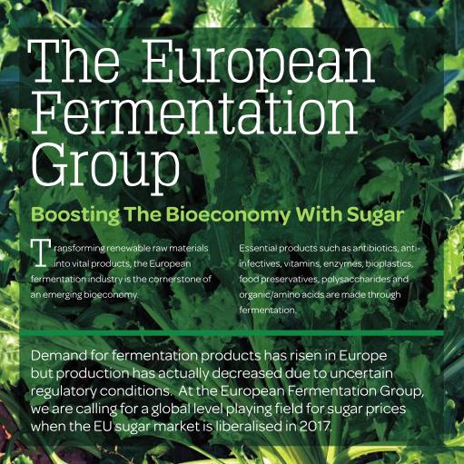 EFG Brochure 2015 - Boosting the Bioeconomy with Sugar