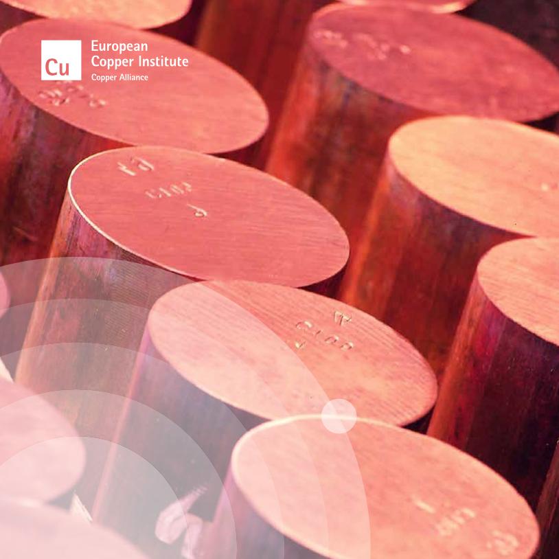 European Copper Institute Annual Report 2013