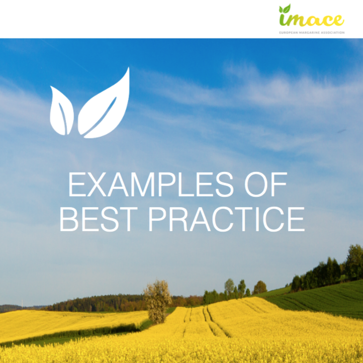 IMACE Examples of Best Practice 2017